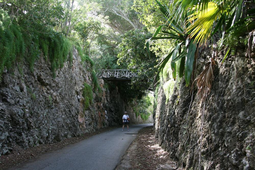 """Alter """"Railway Trail"""" auf den Bermudas"""