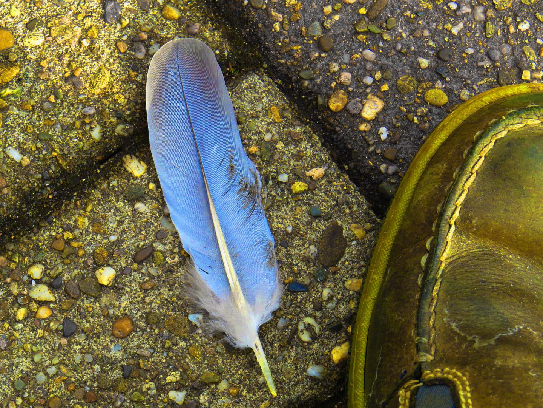 alter Wander-Federschuh am rechten Fuß