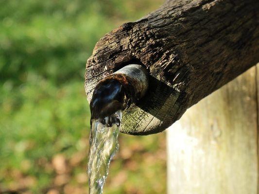Alter Wasserspeier am Holzbrunnen