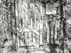 altes Gartentor s/w