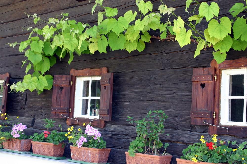 Altes Holzhaus in der Südsteiermark