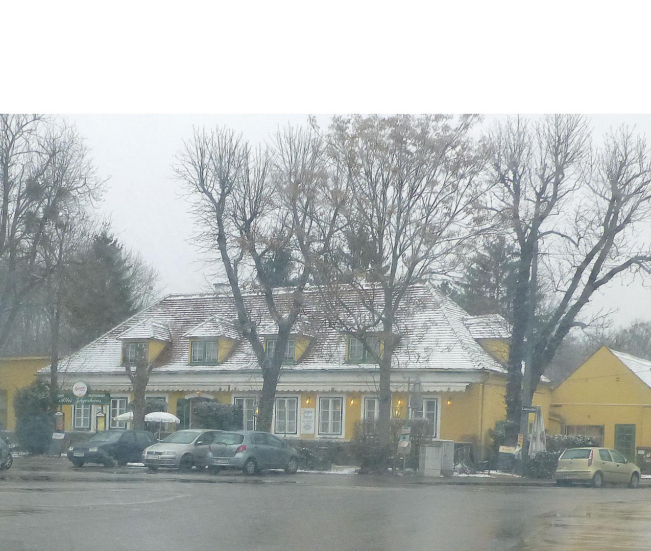 Altes landhaus (restaurant) im prater bei gräuslichem wetter - p.s.
