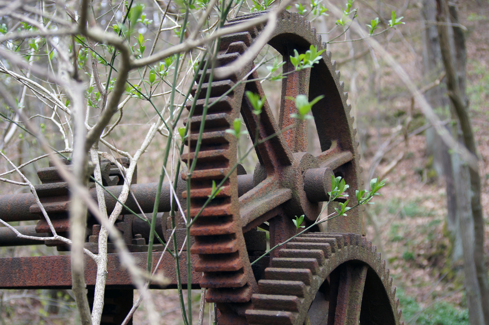 Altes Mühlenschütz