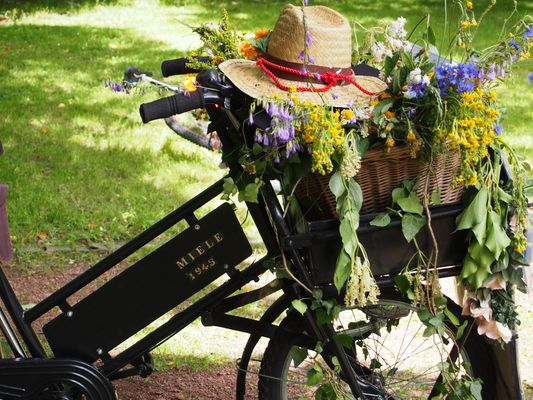 Altes Rad mit Blumenkorb