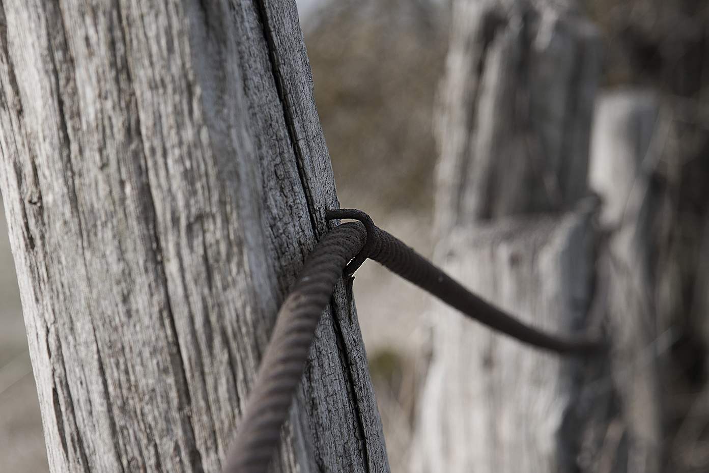 altes Seil