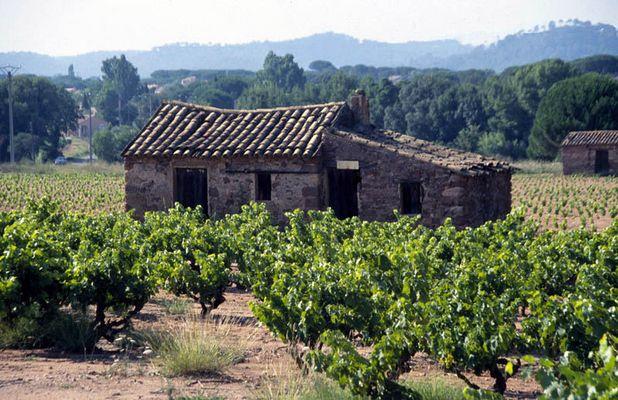 Altes Weingut in Südfrankreich