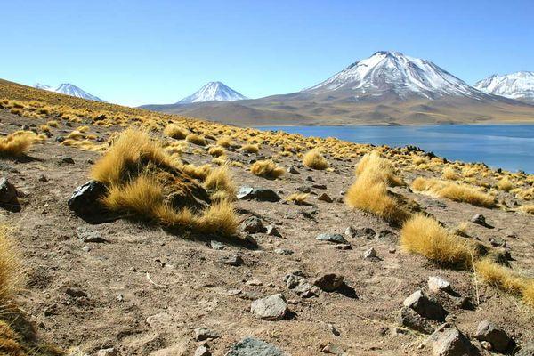 Altiplano/Chile (nächster bekannter Ort: San Pedro de Atacama)