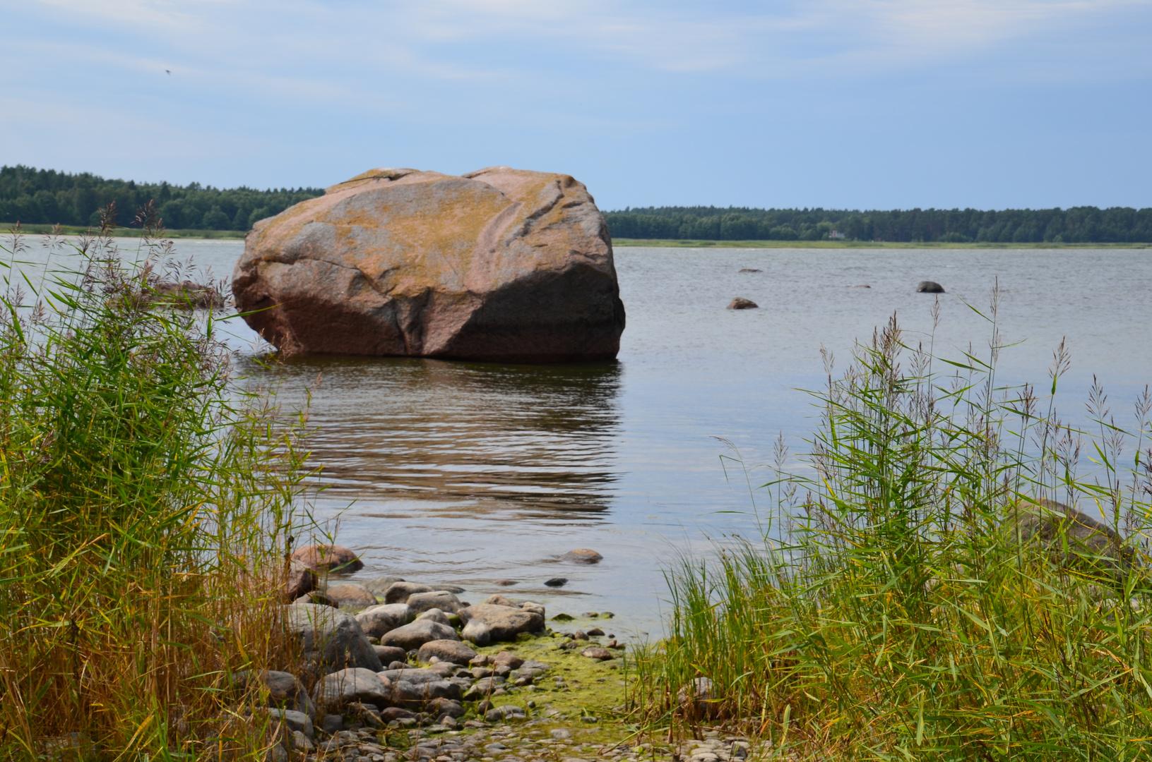 Altja - Findlinge in der Bucht (Juli 2013)