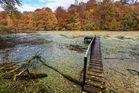 Altrhein....