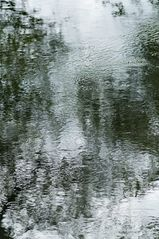 Altrhein Spiegeleien