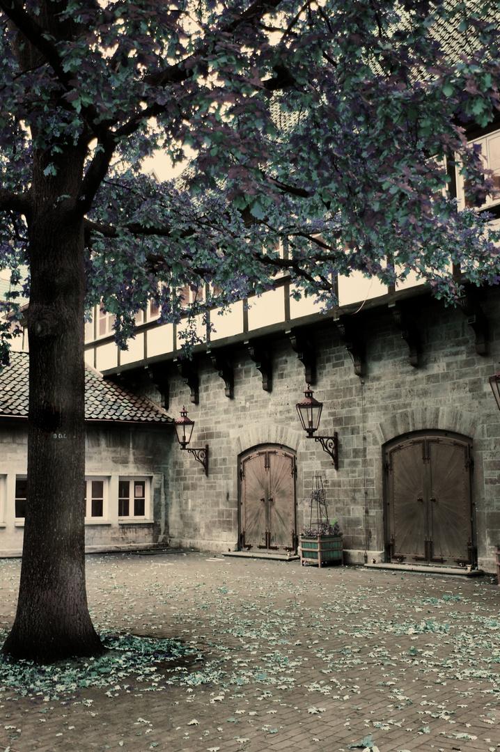 Altstadthaus