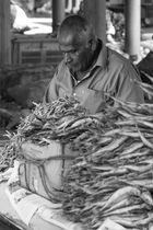 Aluthgama Markt