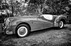 ALVIS Tb14 Special Sport Tourer, Baujahr 1950