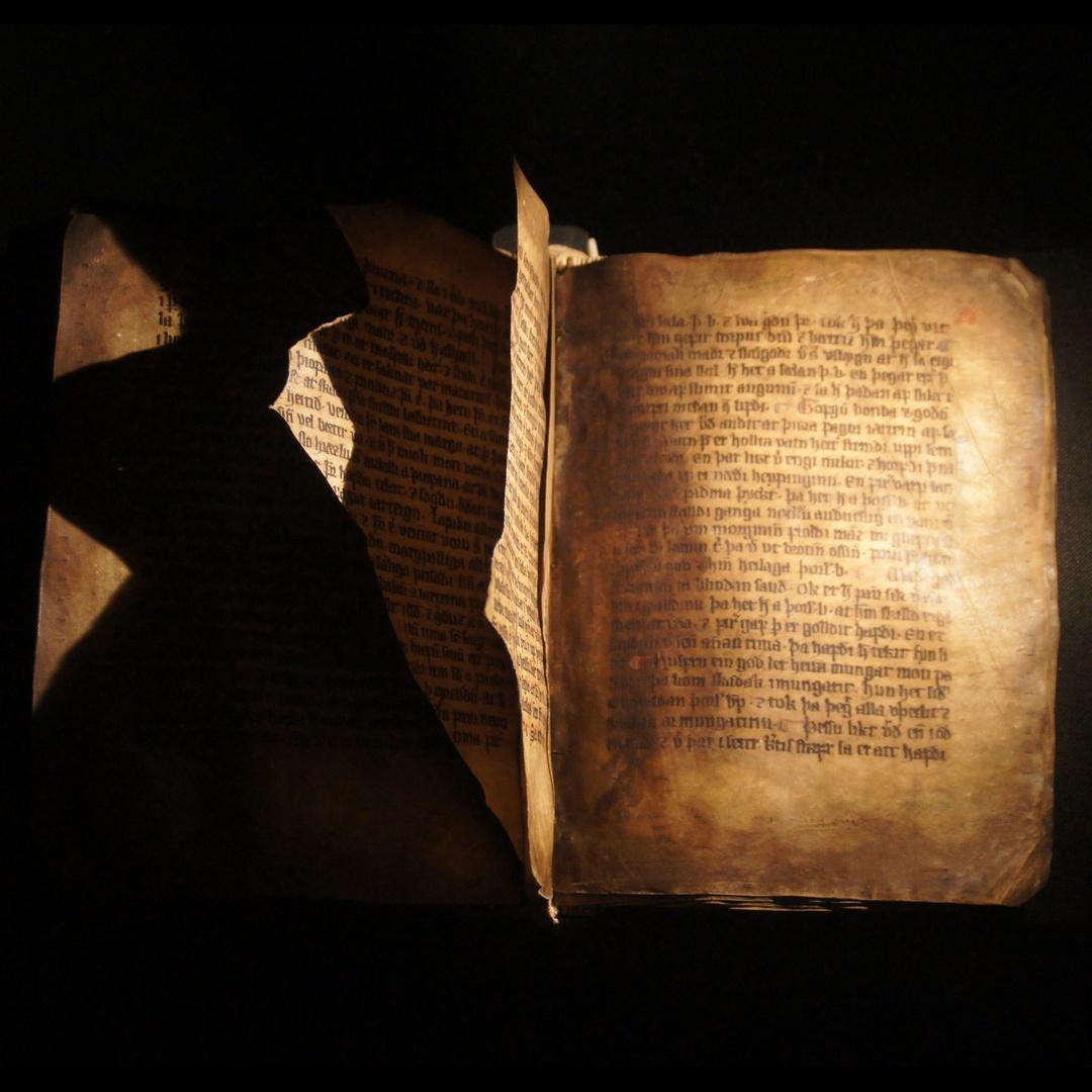 AM 382 4° – Þorlákur -Biografie