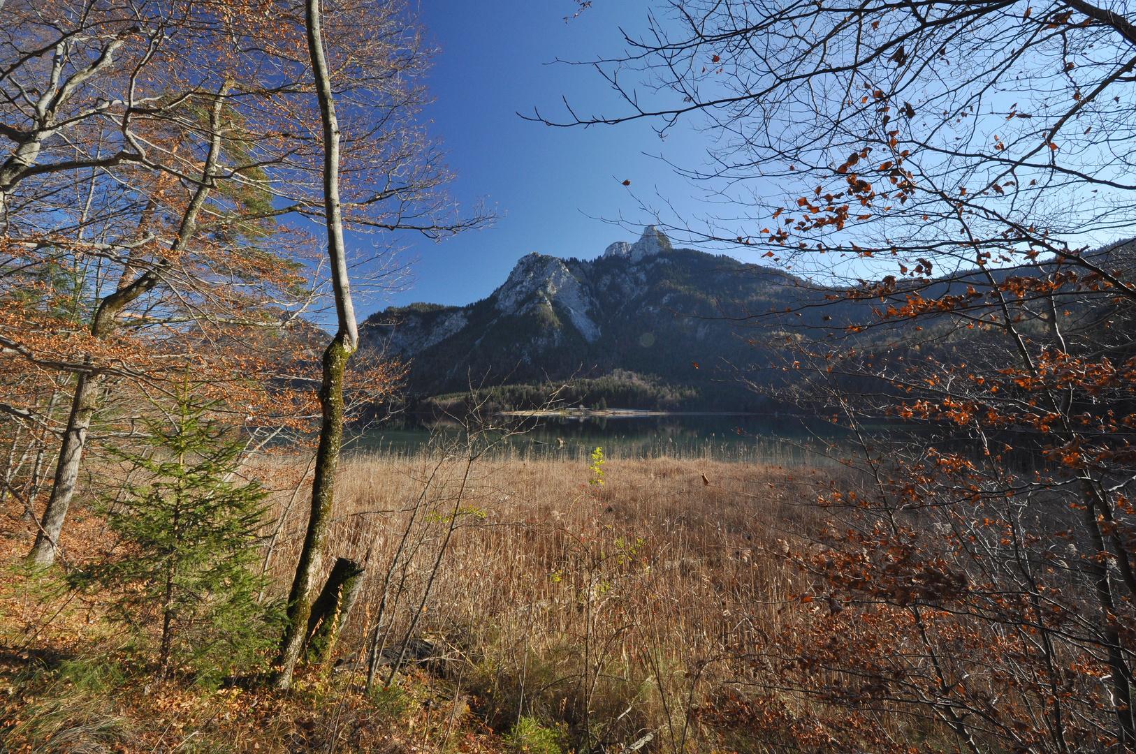 Am Alpsee (II)