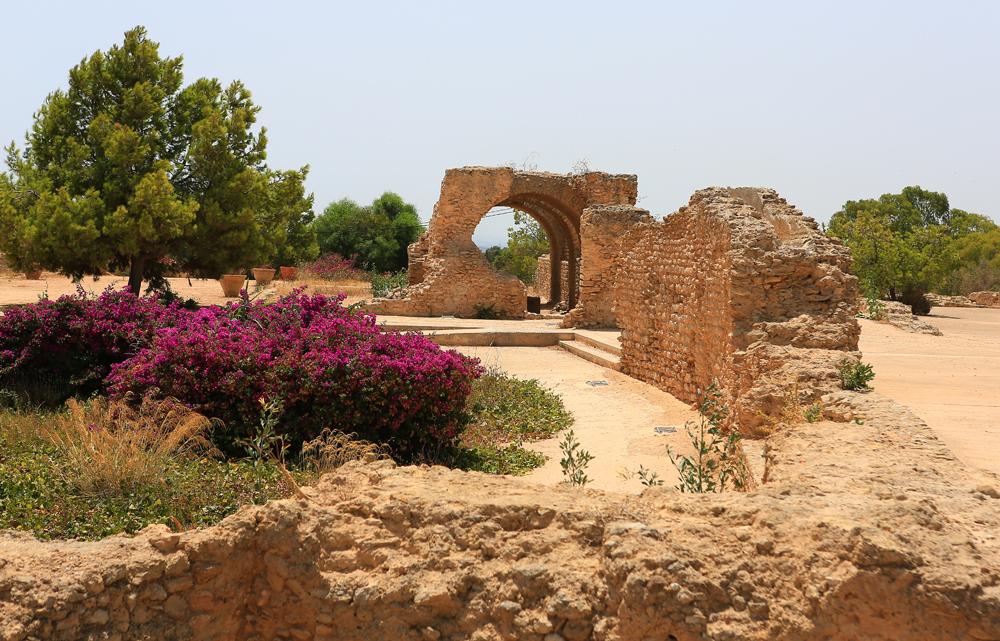 Am Aquädukt von Karthago