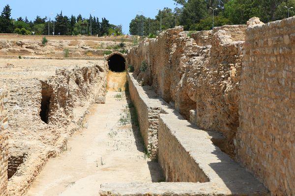 Am Aquädukt von Karthago II