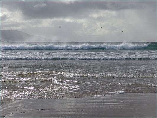 Am Atlantik in Connemara (1)