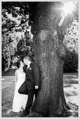 Am Baum
