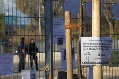 am Bauzaun ein BAUM Stuttgart Park K21 -13.11.2010