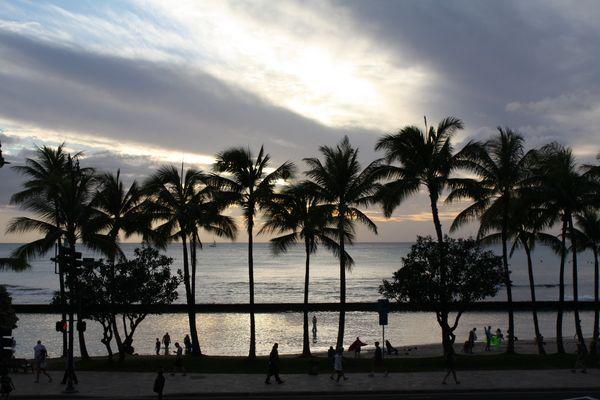 Am berühmten Waikiki Beach