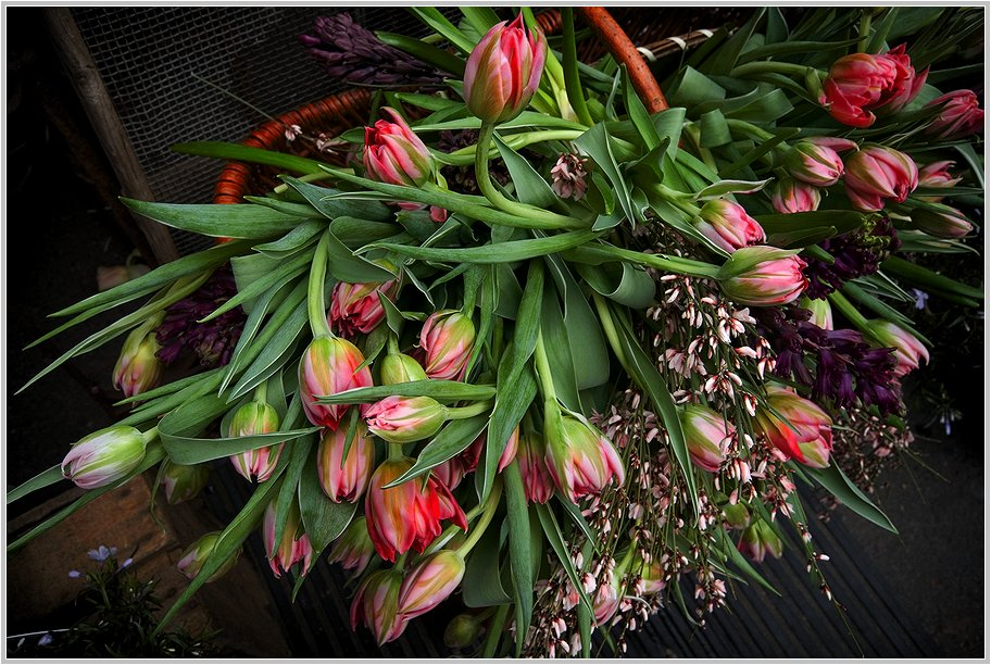Am Blumenstand auf dem Wochenmarkt