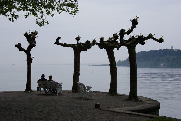 Am Bodensee 001