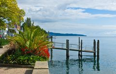 Am Bodensee (2)