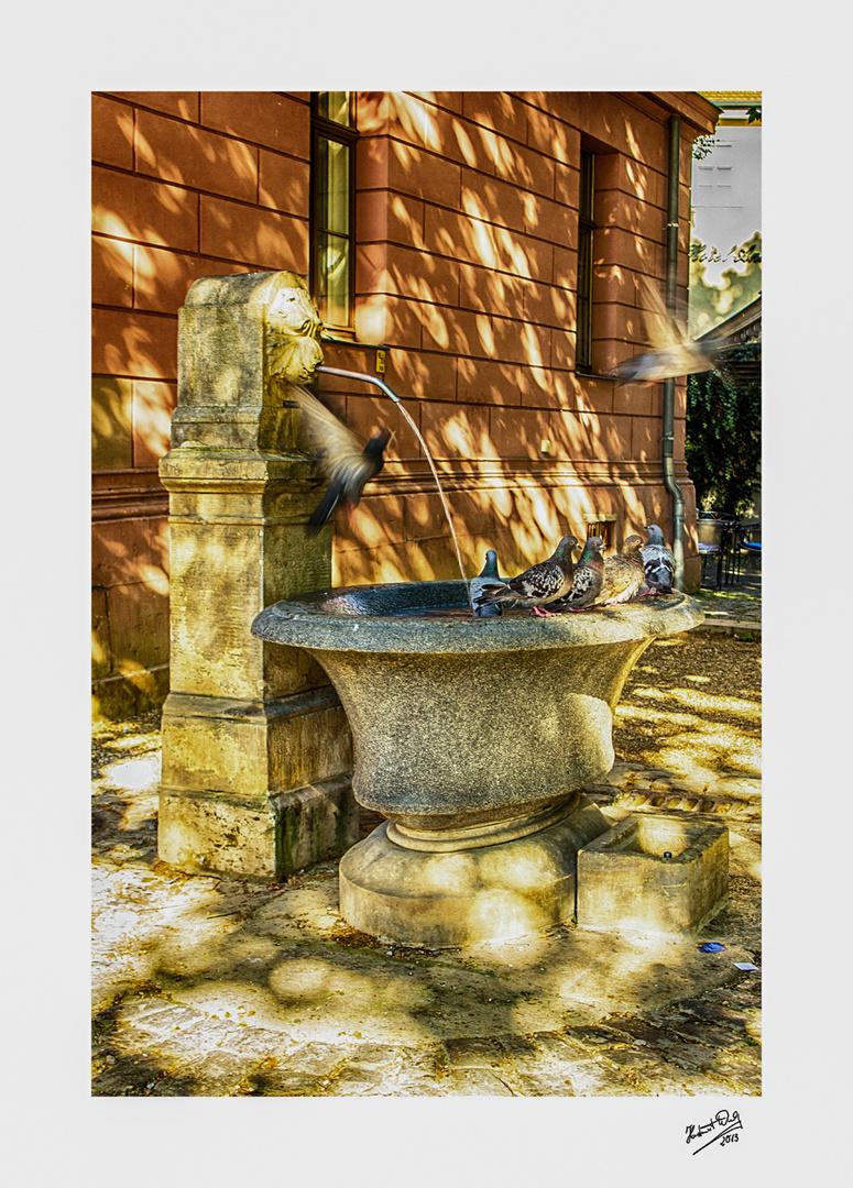 Am Brunnen