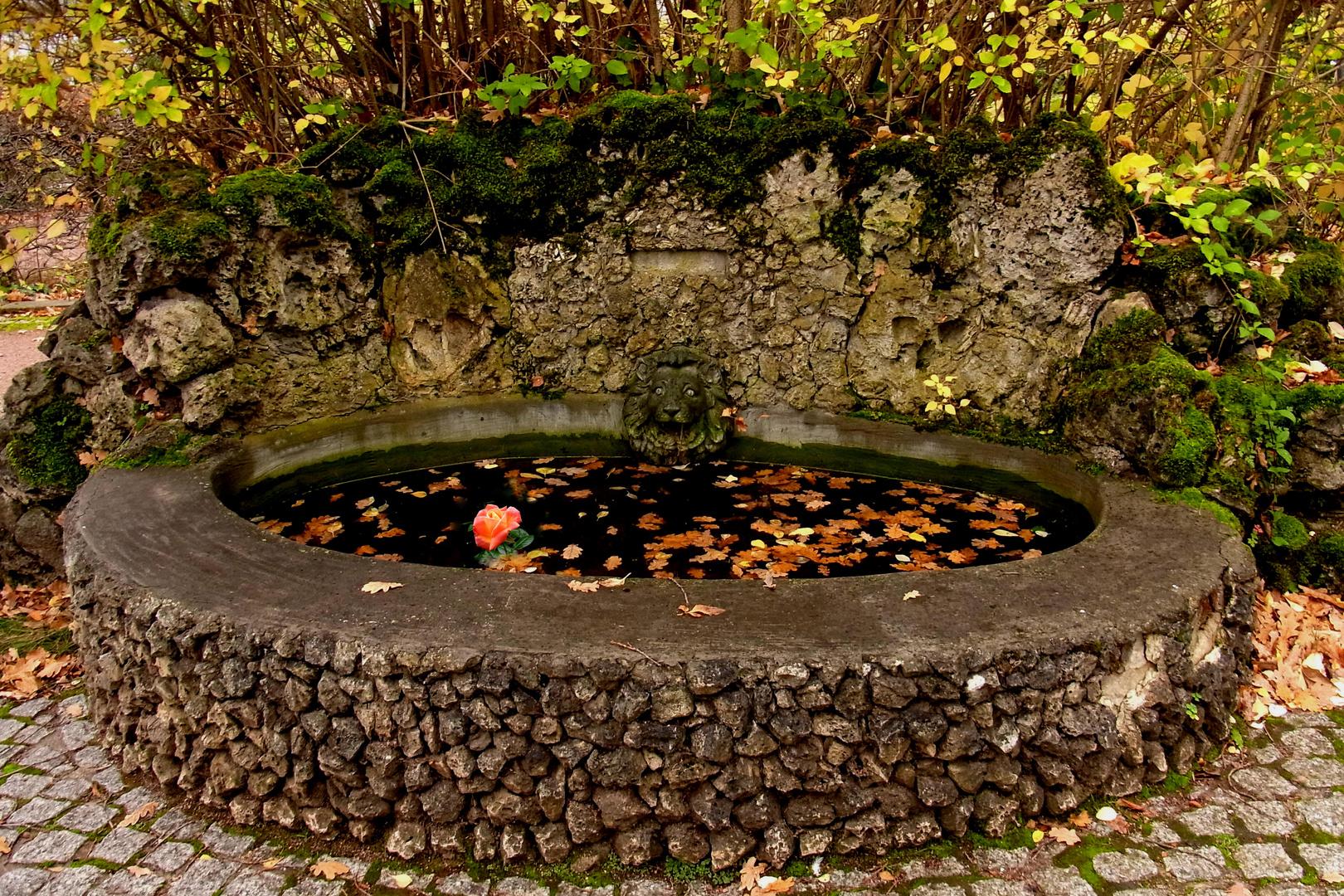 Am Brunnen vor ...