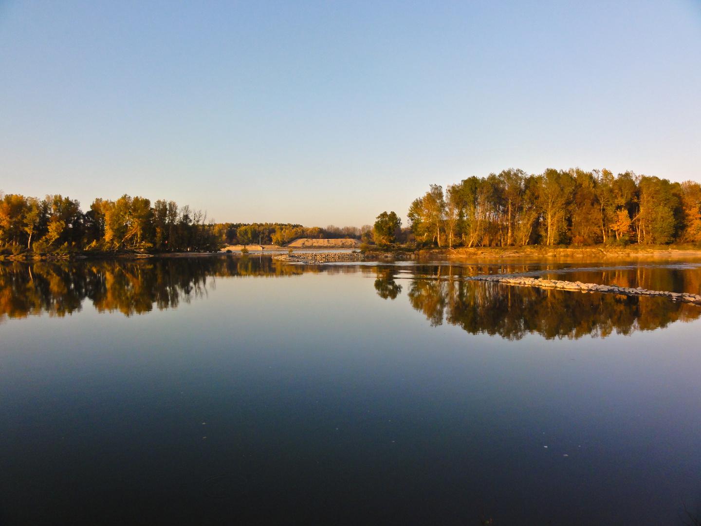am Donau in Ungarn 3
