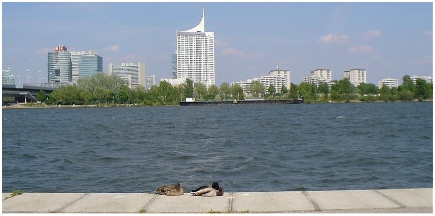 Am Donau-Ufer