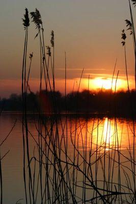 Am Einfelder See...