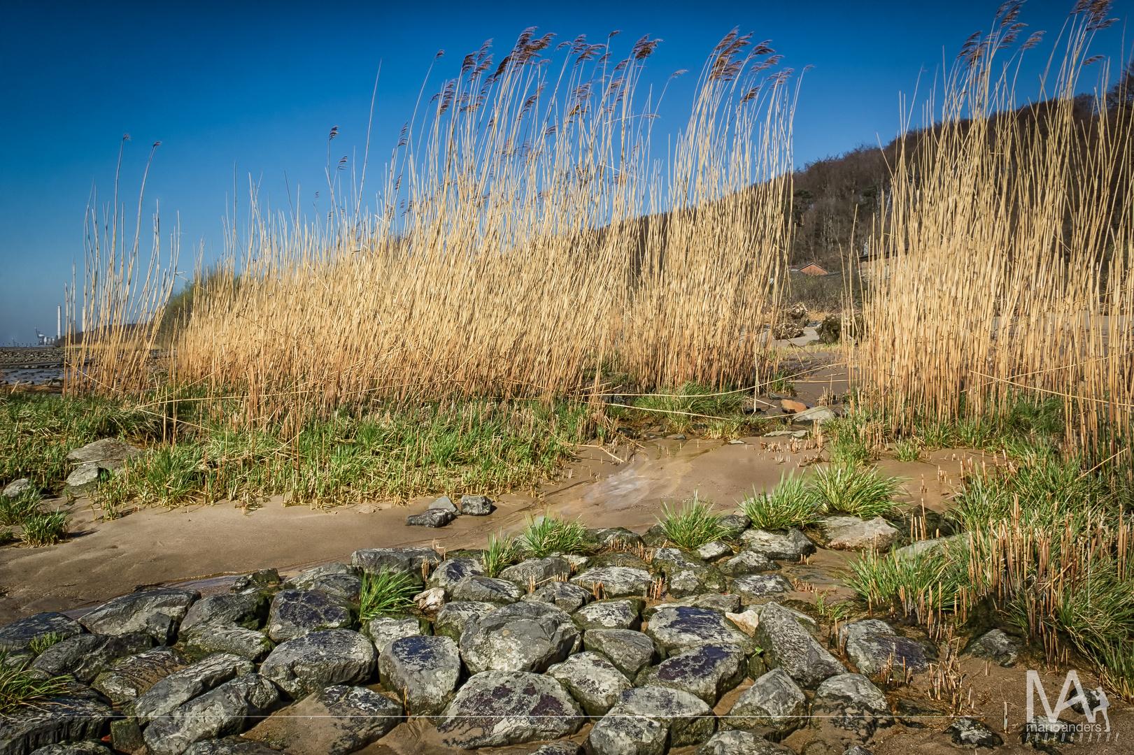am Elbstrand beim Falkensteiner Ufer HH