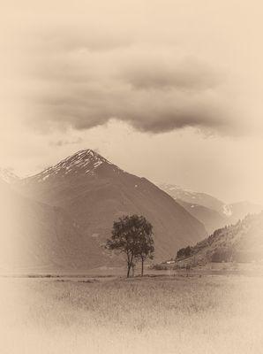 Am Ende des Fjords