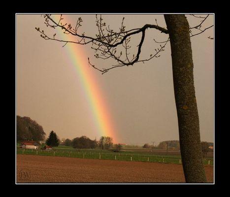 Am Ende des Regenbogens findest Du einen Schatz ...