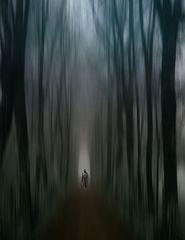 ...Am Ende des Weges.....