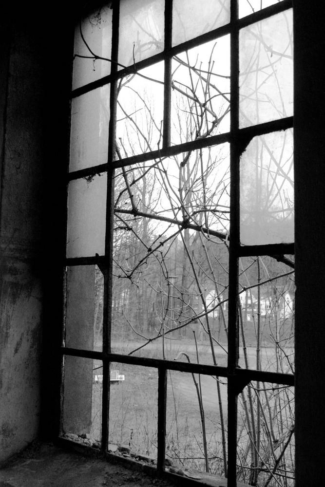 Am Fenster II