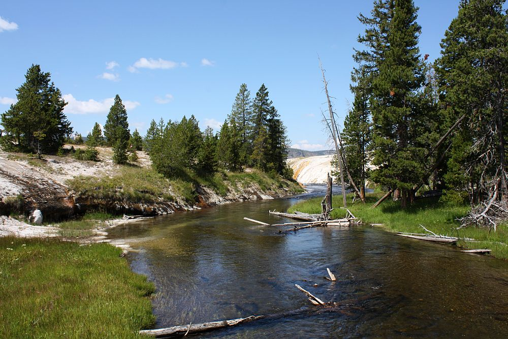 Am Firehole River in der Nähe der Yellowstone Lodge...