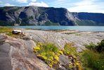 Am Fjord....