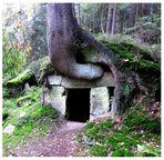 Am Fuchsbau-Steinbruch