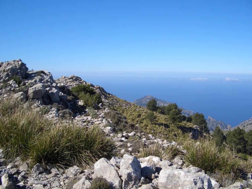Am Fuß des Puig Major