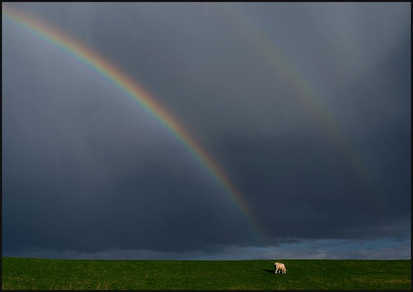 am fuße des regenbogens...( reload)