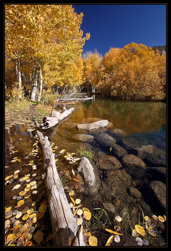 Am goldenen Fluß
