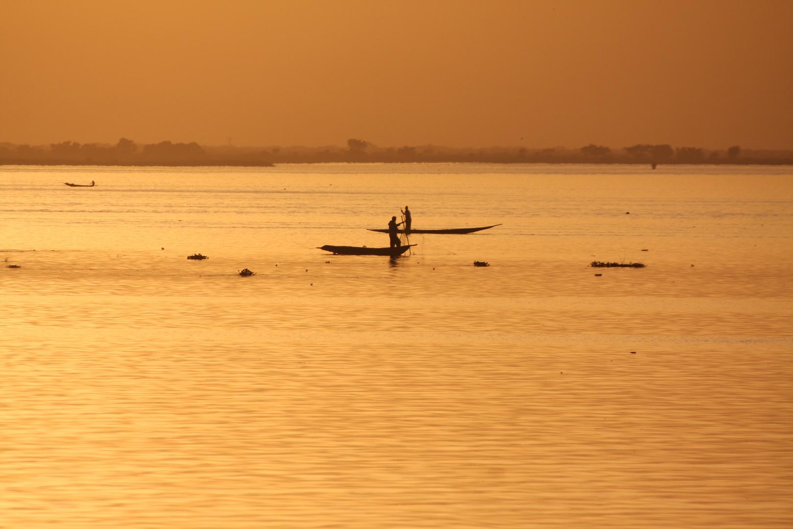 Am goldenen Niger