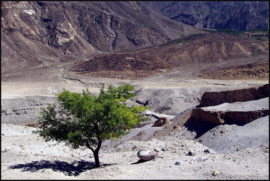 am Karakorum Highway