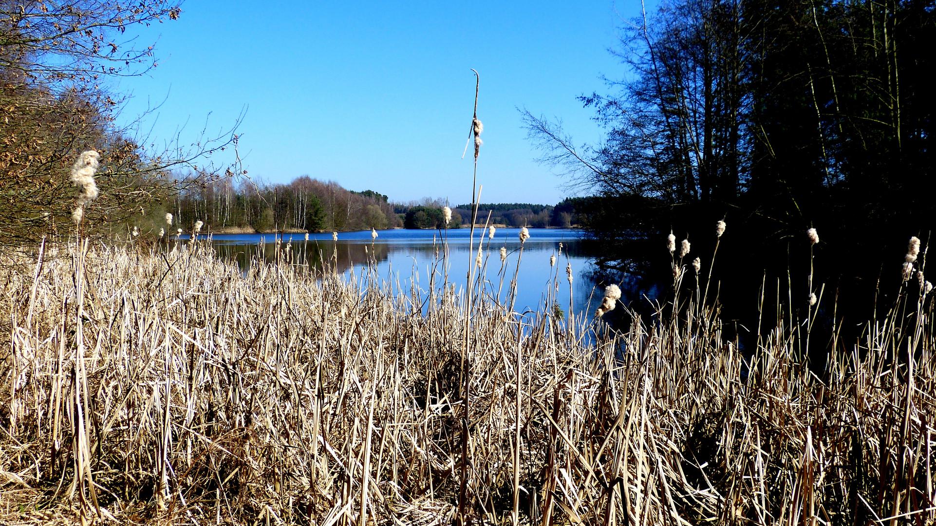 am kleinen Rothsee 3