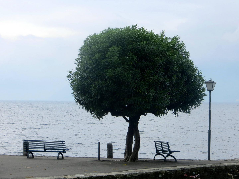 Am Lago Maggiore ...