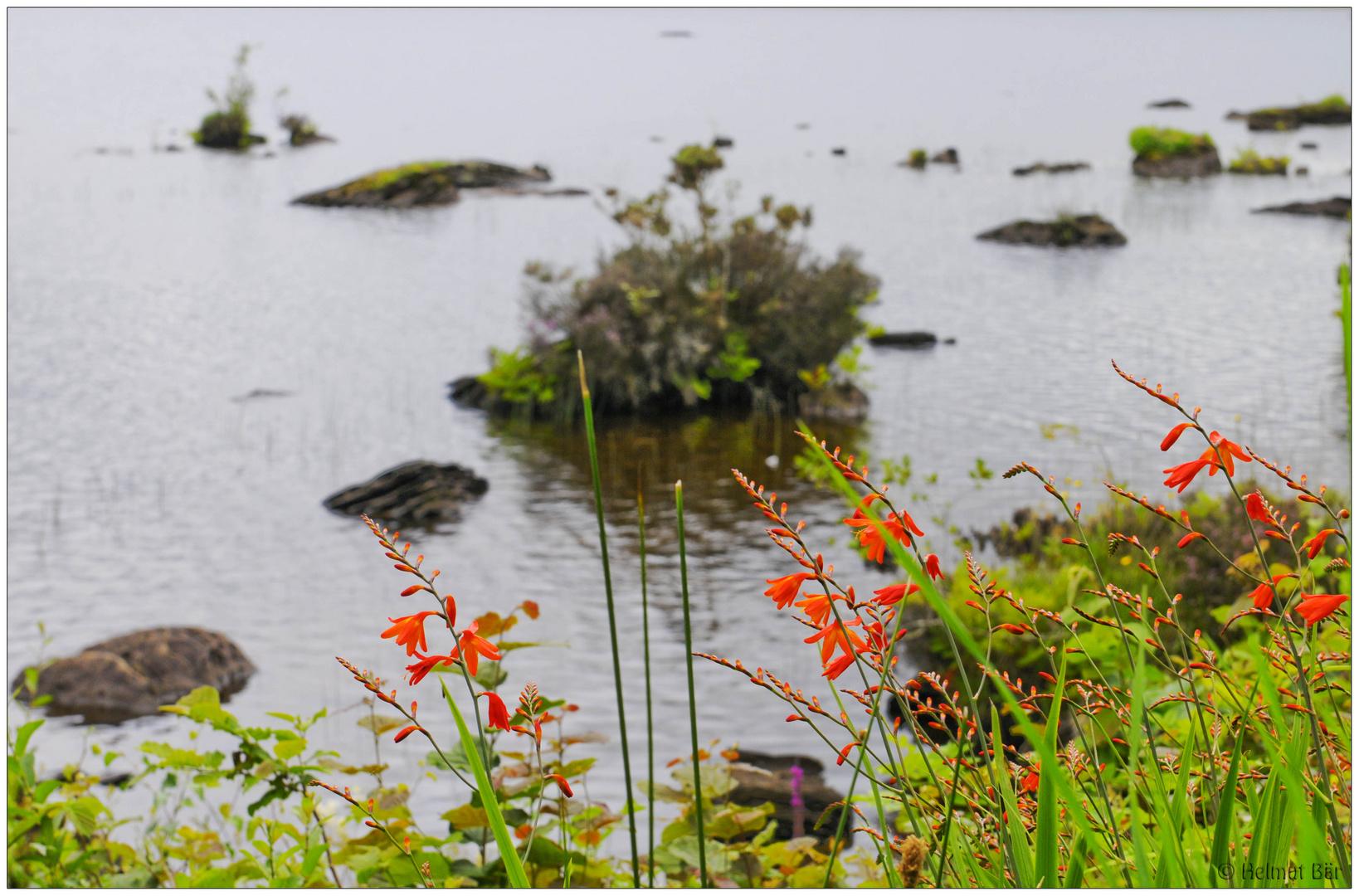 Am Lough Eske