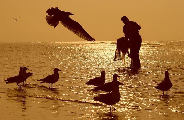 Am Meer